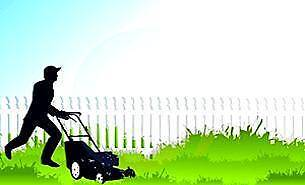 Established Lawn Mowing Business Mountain Creek Maroochydore Area Preview