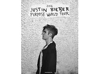 Justin Bieber Purpose World Tour, Pitch Standing Ticket, Dublin RDS Arena - Wednesday 21st June