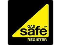 Gas Engineer/Landlord Gas Safety Certificates + service £ 40/Boiler Boiler/ Cooker Hob Installation