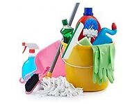 Domestic cleaner cleaning services