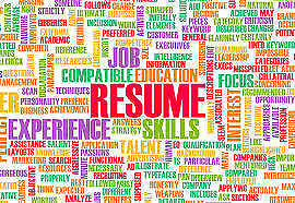 Professional Resume Writing by Career Expert