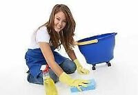 Thorough Cleaning for Houses and Busninesses