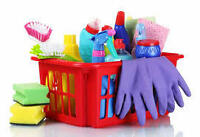 PROFESSIONAL CLEANING / MOVING & DELIVERY COMPANY