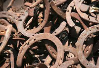 looking to buy your  used horse shoes horseshoes
