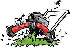 Ray's Mobile Mower Repairs Brisbane South West Preview