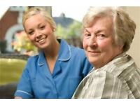 Part Time Care Assistant for the Elderly
