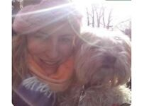 Dog Walking Services in North Leeds
