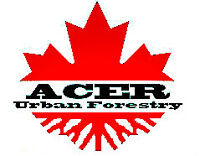 Acer Urban Forestry Aerial Tree Care Specialists
