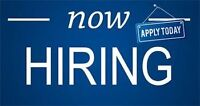 Landscapering & Maintenance people wanted