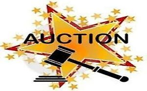 """HURRY CHECK OUT FEBRUARY""""S  SILENT AUCTION THIS MONTH!!!"""