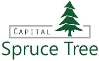 Spruce Tree Capital - Money Available for Real Estate