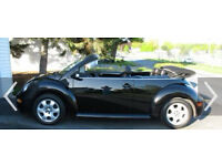 Black beetle convertable