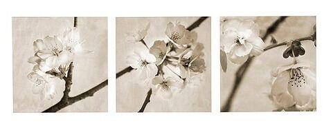 ikea pjatteryd u0027flora maiau0027 canvas prints