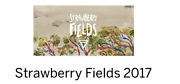 Strawberry fields ticket + early entry pass!! Melbourne Region Preview