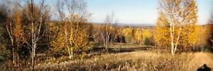 Looking to buy land! 10-200acres!