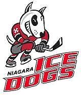 Niagara Ice Dogs FINALS TICKETS.... REVISED PRICES