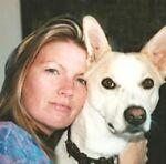 adopt-shelter-animals