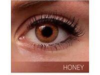 Freshlook Colorblends Natural Looking in Honey Color