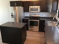 Brand new condo like House for rent