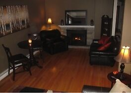 Fully Furnished Executive 2 Bedroom Flat near Downtown