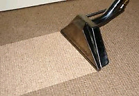 5 Star Carpet Cleaning Services