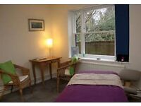 WANTED OFFICE/THERAPY ROOM TO RENT Totnes/Newton Abbot/Dartington (dont mind sharing space)