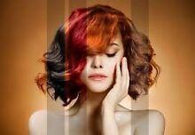 Hair Salon Caloundra Area Preview