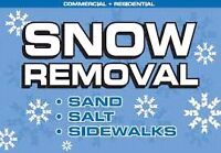 SNOW REMOVAL SERVICES - CITY WIDE - NOVEMBER IS FREE
