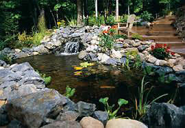 looking  to buy pond liner & plastic pond & pond accessories