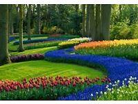 Green Bank Gardening Services