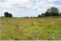 Over 20 acres of land for sale...