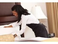 Reliable Cleaner / Guest Room Cleaner/HouseKeeper, 2-3 hours per day