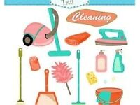 SHELLEY'S HOUSE CLEANING AND IRONING SERVICES
