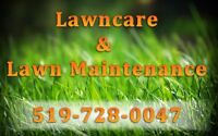 Fall cleanup snow lawn care  trimming