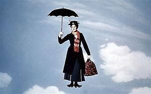 Housekeeper/ Mary Poppins Wanted