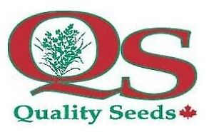 Premium grass seed for sale.