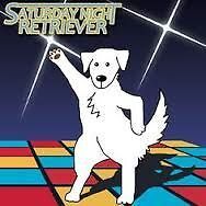 """Beginners """"dancing with dogs"""" class, Sunday 22nd May"""