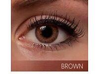 Freshlook Colorblends Natural Looking in Brown Color