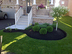 Lawn Care,Landscape,Weed Control Kitchener / Waterloo Kitchener Area image 3