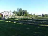 Full & Semi Horse Board Available in Abbotsford
