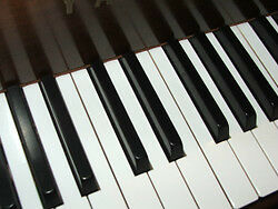 In-Home Piano Lessons in Westdale and Dundas
