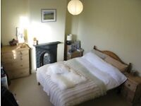 Lovely 3 bed house suitable for considerate students - Horfield - furnished - £370pppm