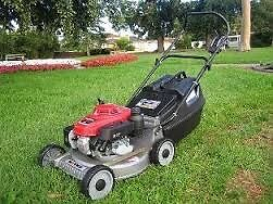 Cheap Lawn Mowing Service Eastwood Ryde Area Preview