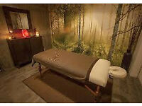Mobile Massage Service in Surrey. Deep Tissue, Sport, SwedishMassage!!! Look at my website for info!