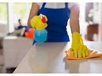 Do you need help with CLEANING or IRONING?