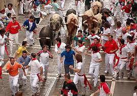 San Fermin - Spain ( The running of the bulls) Brisbane Region Preview