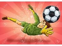 GoalKeeper wanted Sunday mornings @Ferndown home and bournemouth away