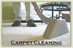 CARPET & UPHOLSTERY STEAM CLEANER, AREA RUGS, MATTRESS, FURNITUR