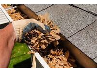 Richard's Roofing Remedies-from gutter clearings to roof repair-we can do it all!