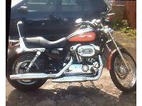 Harley- Davidson XL 1200 C Custom Sport - Orange and Black